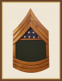 Army Master Sergeant Shadowbox-Green Background