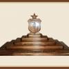 Mahogany Medical Coin Display