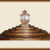 Mahogany Medical Coin Display
